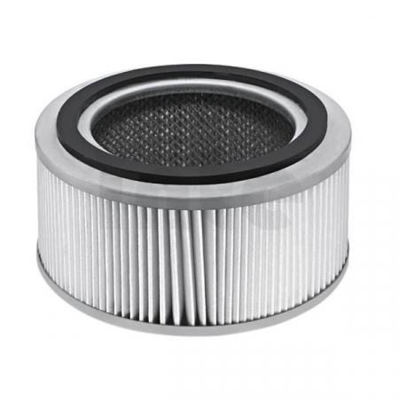 KÄRCHER Hepa filtr T 10/1,T 191